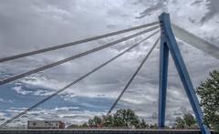 Bridge over the Rhine (carper123) Tags: bridge suspension patterns shapes rhine