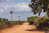 Transpantaneira (rbpdesigner) Tags: brazil slr southamerica brasil america geotagged américa mt matogrosso pantanal brésil américadosul amériquedusud jobo poconé américadelsur llens südamerika transpantaneira centrooeste ブラジル 南美洲 repúblicafederativadobrasil canonllens pantanalmatogrossense americameridionale lentel canonef1635mmf28liiusm regiãocentrooeste canoneos5dmarkii güneyamerika centrooestedobrasil 5dmkii parquenacionaldopantanalmatogrossense pantanalnorte estadodematogrosso stateofmatogrosso jobogeotagged 060poconéestadodematogrossobrasil