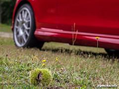 La Buzaca-7 (Gon Cancela) Tags: car vw golf volkswagen galicia coche bbs tsi pazo mkvi mk6 moraña buzaca