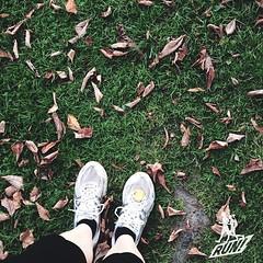 ... und Laufen waren wir auch noch. Ist hier so am Baldeneysee üblich. :) | Jogging.   #Baldeneysee #ruhr #ruhrpott #kiratontravel #travelblog #travel #traveltheworld #travelingram #enjoy #evening #ignice #igtravel #igplace #instaplace #iggood #igtravel #