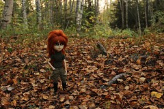 Here she comes... (Dormouse Rose) Tags: hello new autumn doll kitty verona wig carrot pullip luts hash taeyang