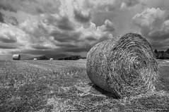 Tempesta a la muntanya 02 (Fernando Laq) Tags: nubes tormenta tempesta montseny nubols hostalric