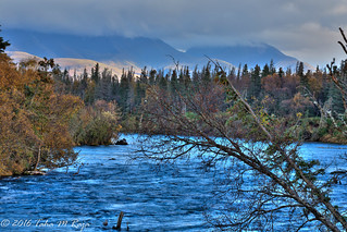 Brooks River View