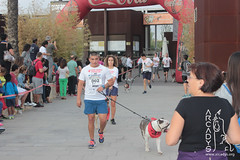 "Can-rerra Popular 2016 - Llegada y descanso tras la carrera -Arcadys.org Biopark Valencia-14 • <a style=""font-size:0.8em;"" href=""http://www.flickr.com/photos/145784091@N07/29631370053/"" target=""_blank"">View on Flickr</a>"