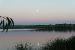 DSC00304.jpg (san_rules) Tags: moon sunset luna atardecer laguna