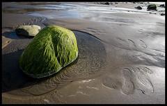 "Manx Series ""The Green Stone"" (Der Reisefotograf) Tags: isle man manx iom landscape stone mossy beach sand sea water"