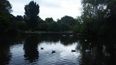 P1010822 (J. Prat) Tags: stephen green park