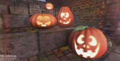 Sari-Sari - The Bumpkins (Abby-Anne) Tags: sarisari original mesh halloween autumn fall seasonal outdoor pumpkins decor lantern carved candle light salem