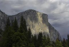 Light on El Capitan (dcnelson1898) Tags: yosemitenationalpark california sierranevadamountains nationalpark nationalparkservice nps mountains mercedriver granite glacier
