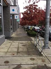 Hiawatha Pl S - a nice neighborhood street (Seattle Department of Transportation) Tags: sdot seattle transportation donghochang hiawatha pl s south rainier judkins sidewalk bike rack racks bicycle tree fall parking