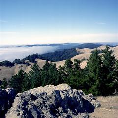 Northern California Coastal Landscape (Scott Holcomb) Tags: bolinasridge mttamalpaisstatepark california zenzabronicas2 zenzanon135f150mmlens kowal393cuv67filter fuji160nsfilm 120film mediumformat 6x6 epsonperfectionv600 photoshopdigitalization
