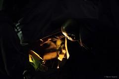 Morador De Rua - Por Marco Soares-4 (Shukster Estdios) Tags: morador de rua mendigo street pessoas pobreza miseria fome realidade photo foto brasil saopaulo choro angustia jornalismo ong