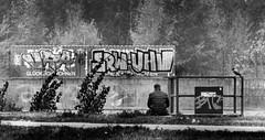 Glcklich Wohnen (don_andy) Tags: bwphotography berlin ufer sitzen sitting river mann guy krhe crow grey autumn cold wind lonely outside bw schwarzweis schwarzweiss