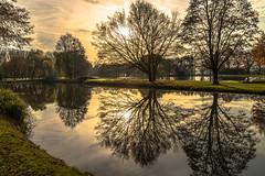 Reflections (jojo54th) Tags: reflections reflektionen speigelung wasser bume nature natur sunlight sonnenlicht