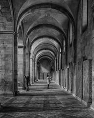 Kloster Eberbach (tfading) Tags: gewlbe sule bogen architektur einfarbig alt germany hessen eberbach kloster