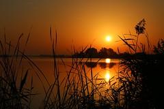 Golden hour! :-) (StefanFritz) Tags: mirror evening weeds love fritz stefan water tamron canon zonsondergang light beautiful serene sunset explore lake netherlands stefanfritz