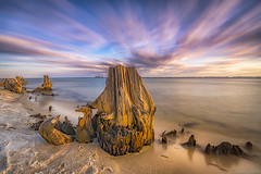 Driftwood On The Shore (Stuart Schaefer Photography) Tags: water shoreline clouds navelliveoak landscape sky seascape parks gulfbreeze liveoaknatiionalseashore outdoors outdoor longexposure driftwood cloudscape florida serene sunset sea