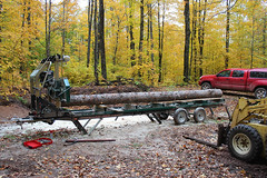 20 footer (view2share) Tags: october152016 october october2016 2016 fall fallcolor autumn woods wood work northwoods northwood camp skidsteer machine saw mill sawmill sawmilling forest deansauvola upperpeninsula uppermichigan michigan mi woodlandmills hm130 bandsaw bandmill portablesawmill log logs lumber ford cl340 loader skidloader leaves leaf timber