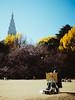 Painter (gshirt1222) Tags: painter people autumn shinjuku shinjukugyoen tokyo japan a7ii ilce7mk2 sony sel50f18f 50mm outdoor vsco