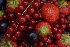 1-DSC_8928 nostalgic summer on my mind (profmarilena) Tags: summer redfruits macro closeup softfruit berries strawberries cherries currant