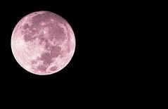 AD Super Moon (M N S Photography) Tags: moon supermoon gaint abu dhabi uae night nikon d610 80200mm