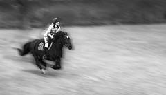 Magic (NathanBateson) Tags: motion blur horse speed gallop