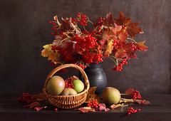 And Your Fragrance Shall Be My Breath (panga_ua) Tags: andyourfragranceshallbemybreath autumn october red fruits berries apples basket viburnum ceramics blackjug autumnleaves autumncolors chiaroscuro