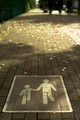 shy (N.sino) Tags: m9 summilux50mm fallenleaves adam street sign