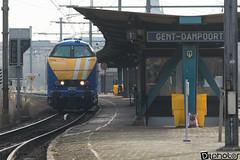 Gand-Gent-Dampoort Infrabel 6202 (DiL Photos) Tags: infrabel croissrail sncb am96 bombardier alstom siemens vectron traxx class66 desiro am08 type 13 fret hkm cargo