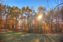 Autumn Sunset (J.L. Ramsaur Photography (Thank You for 4 million ) Tags: jlrphotography nikond7200 nikon d7200 photography photo cookevilletn middletennessee putnamcounty tennessee 2016 engineerswithcameras cumberlandplateau photographyforgod thesouth southernphotography screamofthephotographer ibeauty jlramsaurphotography photograph pic cookevegas cookeville tennesseephotographer cookevilletennessee tennesseehdr hdr worldhdr hdraddicted bracketed photomatix hdrphotomatix hdrvillage hdrworlds hdrimaging hdrrighthererightnow sunrise sunset sun sunrays sunlight daytime sunglow orange yellow blue fall fallcolors fallleaves fallseason fallinthesouth colorful colors autumn autumncolors autumninthesouth autumnleaves falltrees autumntrees autumnsunset fallsunset landscape southernlandscape nature outdoors godsartwork naturespaintbrush