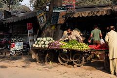 0W6A8816 (Liaqat Ali Vance) Tags: people vegetable colors google lahore liaqat ali vance photography punjab pakistan