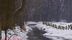 Winter (niebergall.thomas) Tags: schnnee flus