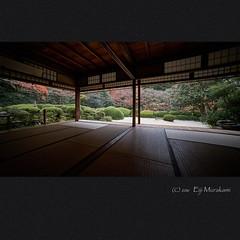 (Eiji Murakami) Tags: japan kyoto autumn sony alpha7r2 7r2