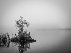 Misty morning on Haapajärvi's reservoir