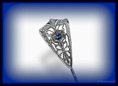 Macro Mondays - Arrow (zendt66) Tags: zendt66 zendt nikon d7200 macromonday macromondays macro monday fotomatix stickpin stick pin jewelry bluestone picasa vignette