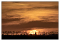 AR164646-B (-AR-) Tags: spuimondingwest voorneputten goereeoverflakkee uitzicht view horizon zon sun ondergaandezon settingsun zonsondergang sunset wolk cloud wolken clouds weer weather kleur color colour bomen trees dijk dike schemer twilight watertoren watertower dirksland