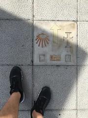 In Santander, looking at camino symbols!