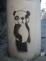 graffiti, Edinburgh (duncan) Tags: graffiti stencil edinburgh panda