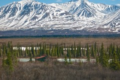 USA - Alaska (Herculeus.) Tags: homes snow mountains ice river ak cabins trestles 5photosaday alaskanrange denalinp talkeetnatodenali