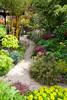 Pagoda path in mid spring sunshine (Four Seasons Garden) Tags: york uk england beautiful stone garden four golden spring seasons path bamboo foliage euphorbia walsall midas fourseasonsgarden polychroma