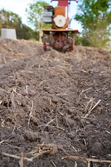 Tilling the Garden - Taking a empty field and making it into a lush garden (Homeandgardners) Tags: usa grass closeup austin garden weeds gardening earth tx roots soil dirt planting tilling tines rototiller ccby 04002976