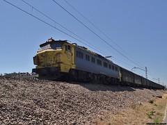 251 (firedmanager) Tags: train tren locomotive caf mitsubishi porriño locomotora freighttrain renfe macosa 251 oporriño renfemercancías japonesaymedia