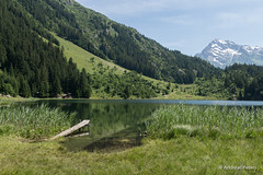 DSC06747_s (AndiP66) Tags: summer sun lake mountains alps landscape schweiz switzerland see sommer sony sigma berge alpen alpha bergsee landschaft sonne canton uri golzernsee golzern maderanertal kanton bristen 1835mm silenen andreaspeters 77m2 a77ii ilca77m2 77ii 77markii slta77ii