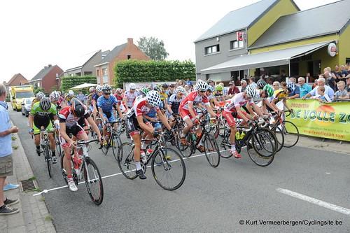 Geel Oosterlo  (34)