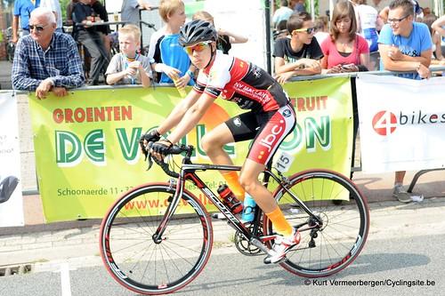 Geel Oosterlo  (14)