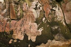 Granite (gripspix) Tags: germany deutschland waterfalls granite allerheiligen fissures badenwrttemberg granit wasserflle oppenau klfte 20140622
