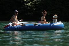 Schlauchboot Sevylor Caravelle K105 ( Gummiboot ) mit Bordhund auf dem Rhein bei D.iessenhofen im Kanton Thurgau in der Schweiz (chrchr_75) Tags: dog chien rio ro river boot schweiz switzerland boat europa suisse swiss fiume rivire hund juli reno christoph svizzera fluss rhine rhein strom rin rijn jolla canot dinghy bote schlauchboot caravelle 2014 rivier  suissa joki rzeka jolle gummiboot flod sloep rhin schwimmweste chrigu 1407 sevylor hochrhein  rhenus chrchr hurni k105 chrchr75 chriguhurni bordhund chriguhurnibluemailch albumrhein gummiboote juli2014 hurni140706 albumrheinsteinamrheinrheinfall albumschlauchbootsevylorcaravellek105 albumhochrhein