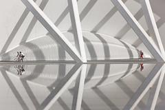 Armonía (kinojam) Tags: reflection valencia architecture canon arquitectura kino calatrava reflejo cac santiagocalatrava lineas geometria ciudaddelasartesydelasciencias rectas geometrica ciudaddelasartes ciudadartes ciudadartesyciencias kinojam