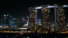 View from Gardens by the Bay (SmartFireCat) Tags: gardens skyline marina bay singapore skyscrapers towers sands singapur singapura torres rascacielos
