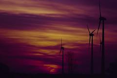 Wind Power Sunset (Minolta Dynax 505si, DM Paradies 400) - after cleanup (baumbaTz) Tags: sunset cloud film clouds germany deutschland nikon sonnenuntergang minolta iso400 atl wolken windmills scanned pentacon coolscan dm underexposed windpower 2200 windkraftanlage 2014 200mm windmühle niedersachsen lowersaxony paradies c41 jobo unterbelichtet windmühlen 505si autolab windkraftanlagen ls40 nikoncoolscan4000ed minoltadynax505sisuper dmparadies400 joboautolabatl2200 despotted